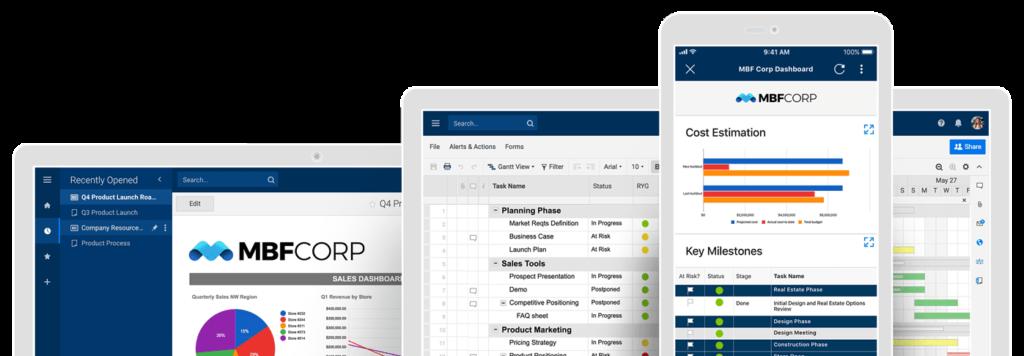 Smaersheet Project Management Optimum Partner